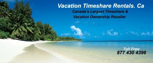 gallery/timeshare vacationp rental